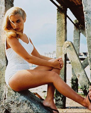 This is an image of 214378 Alexandra Bastedo Photograph & Poster