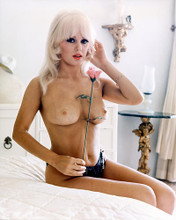 This is an image of 220249 Mamie Van Doren Photograph & Poster