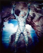 This is an image of 220513 The Creature from the Black Lagoon Photograph & Poster