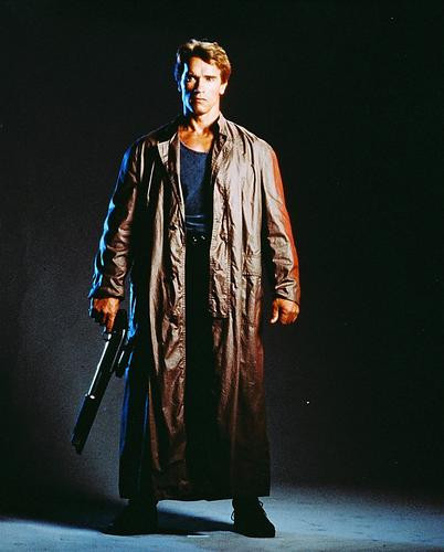 This is an image of 221255 Arnold Schwarzenegger Photograph & Poster