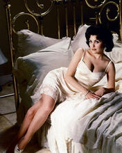 This is an image of 224862 Sherilyn Fenn Photograph & Poster