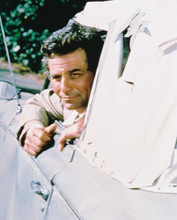 This is an image of 234070 Peter Falk Photograph & Poster