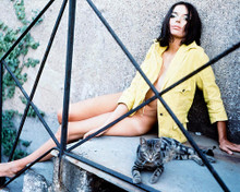 This is an image of 227558 Barbara Steele Photograph & Poster