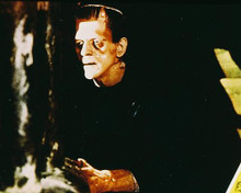 This is an image of 227896 Boris Karloff Photograph & Poster