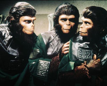 This is an image of 235634 Planet of the Apes Photograph & Poster