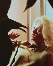 This is an image of 239660 Tippi Hedren Photograph & Poster