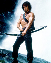 This is an image of 227109 Sylvester Stallone Photograph & Poster