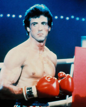 This is an image of 228356 Sylvester Stallone Photograph & Poster