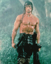 This is an image of 228386 Sylvester Stallone Photograph & Poster