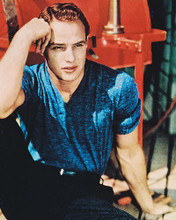 This is an image of 230434 Marlon Brando Photograph & Poster