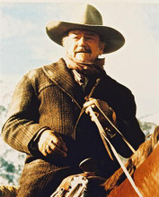 This is an image of 233362 John Wayne Photograph & Poster