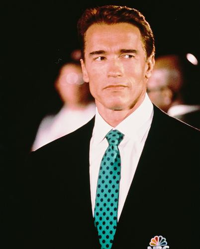 This is an image of 233739 Arnold Schwarzenegger Photograph & Poster