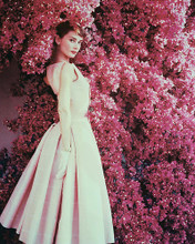 This is an image of 234605 Audrey Hepburn Photograph & Poster