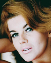 This is an image of 240749 Ann-Margret Photograph & Poster
