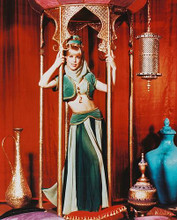 This is an image of 242938 Barbara Eden Photograph & Poster