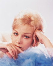 This is an image of 243439 Kim Novak Photograph & Poster