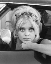 This is an image of 170871 Goldie Hawn Photograph & Poster