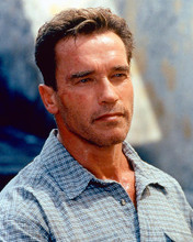 This is an image of 248320 Arnold Schwarzenegger Photograph & Poster