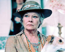 This is an image of 237532 Judi Dench Photograph & Poster