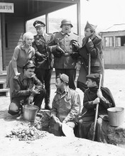 This is an image of 171369 Hogan's Heroes Photograph & Poster