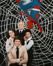 This is an image of 251834 Amazing Spider-Man Photograph & Poster