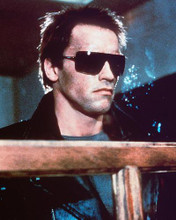 This is an image of 257413 Arnold Schwarzenegger Photograph & Poster