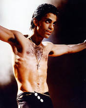 This is an image of 257683 Prince Photograph & Poster