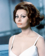 This is an image of 258631 Sophia Loren Photograph & Poster