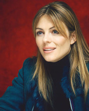 This is an image of 261242 Elizabeth Hurley Photograph & Poster
