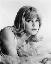 This is an image of 178287 Sue Lyon Photograph & Poster