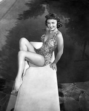 This is an image of 178513 Donna Reed Photograph & Poster