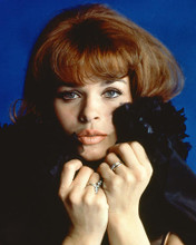 This is an image of 264755 Senta Berger Photograph & Poster