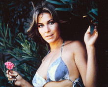 This is an image of 254757 Michele Carey Photograph & Poster