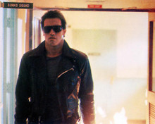 This is an image of 258710 Arnold Schwarzenegger Photograph & Poster