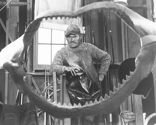 This is an image of 177949 Jaws Photograph & Poster