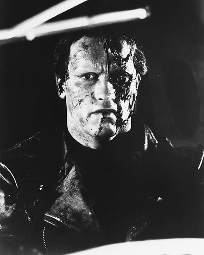 This is an image of 178724 Arnold Schwarzenegger Photograph & Poster