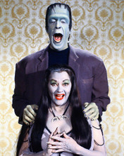 This is an image of 265077 The Munsters Photograph & Poster