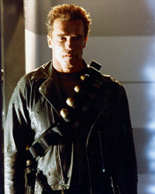 This is an image of 265683 Arnold Schwarzenegger Photograph & Poster
