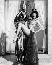 This is an image of 179234 Amanda Barrie Photograph & Poster