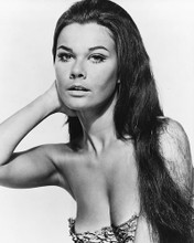 This is an image of 179658 Imogen Hassall Photograph & Poster