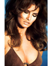 This is an image of 267182 Raquel Welch Photograph & Poster