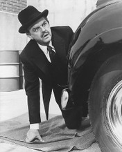 This is an image of 180294 David Tomlinson Photograph & Poster