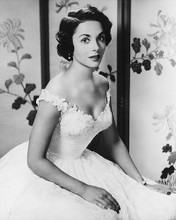This is an image of 180353 Dana Wynter Photograph & Poster