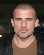 This is an image of 269831 Dominic Purcell Photograph & Poster