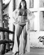 This is an image of 194432 Caroline Munro Photograph & Poster