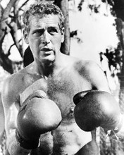 This is an image of 194443 Paul Newman Photograph & Poster