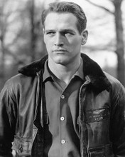 This is an image of 194449 Paul Newman Photograph & Poster