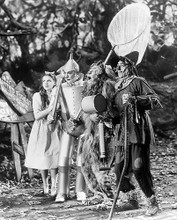 This is an image of 176389 The Wizard of Oz Photograph & Poster