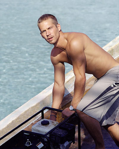 This is an image of 269384 Paul Walker Photograph & Poster