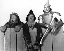 This is an image of 176604 The Wizard of Oz Photograph & Poster